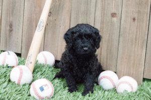 Jeter with baseball