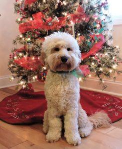 Christmas Charlie